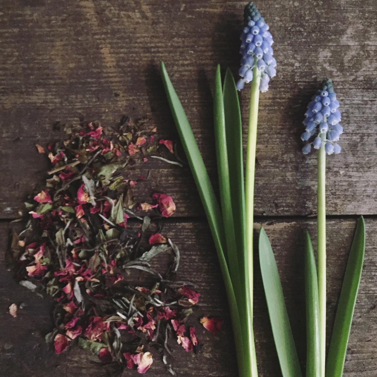 Tea & Flowers | Bloemen schikken op vaas